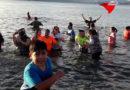 ¡Puerto Williams también tuvo Chapuzón!