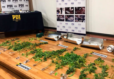 """""""Cisne Negro Austral"""": Incautan cocaína y marihuana en Porvenir"""