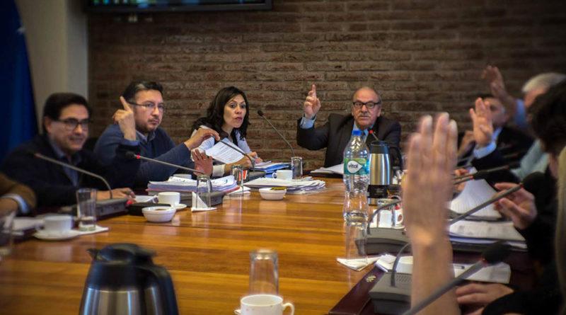 Consejo Regional aprobó más de 1000 millones para proyectos en comunas de Magallanes