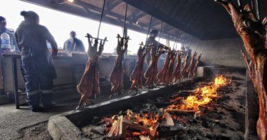 Fiesta del Ovejero: 40 corderos al palo se prepararon en Cerro Sombrero