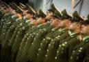 Exigen que se recupere la dotación de Carabineros que bajó en Magallanes