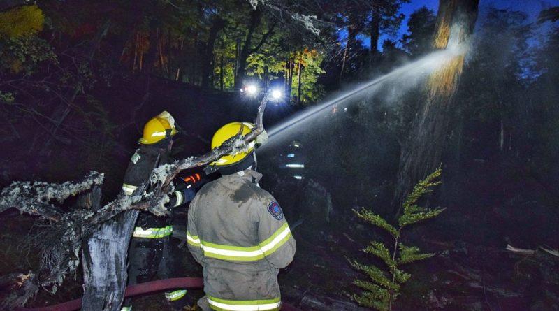 Caída de rayo provocó incendio forestal en Cabo de Hornos